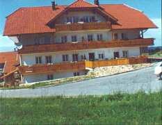 Ferienwohnungen Thurnhof, Ferienwohnung - Ferienhaus in Deutschland, Regen, Bayerischer Wald