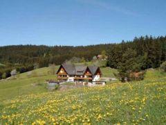 Ferienwohnungen Haus Erlenmoos ***, Ferienwohnung - Ferienhaus in Deutschland, St.Georgen Ortsteil Langenschiltach, Schwarzwald