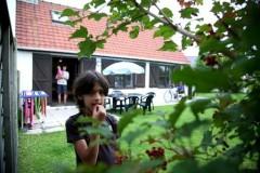 Ferienhaus FISCHERHAUS Zeewind, Ferienwohnung - Ferienhaus in Belgien, Bredene, Nordsee