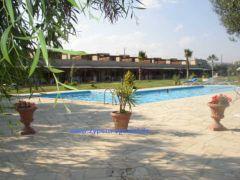 Ferienhäuser Zygi Appartements, Ferienwohnung - Ferienhaus in Zypern, Zygi, Südzypern
