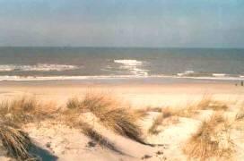 Ferienhäuser Albatros und Strandperle im Park Strandslag, Ferienwohnung - Ferienhaus in Niederlande, Julianadorp, nordholländische Nordseeküste