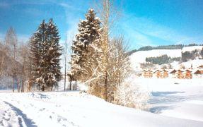 Ferienwohnung Schneeheide, Ferienwohnung - Ferienhaus in Deutschland, Missen, Oberallgäu